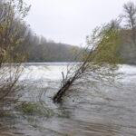 El Ebro bajaba potente esos días...