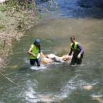 Los voluntarios valientes como jabatos. ¡Cómo pesaba el plástico de invernadero!