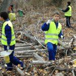 Los estudiantes de Actividades Agropecuarias