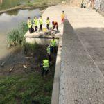 En la zona del embarcadero del Ebro hubo muchos residuos voluminos muy bien enterrados.