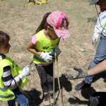 Y siempre encontramos un hueco para la educación ambiental. Conocer es amar. ¿A que no habías visto antes un avispero?