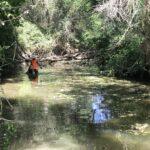 Hay que examinar cada centrímetro de río