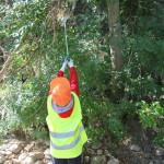 Voluntarios de todas las edades dan uso a las herramientas que les proporcionamos