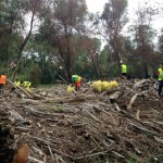 En los acúmulos de ramas arrastradas por la riada encontramos una gran cantidad de residuos.